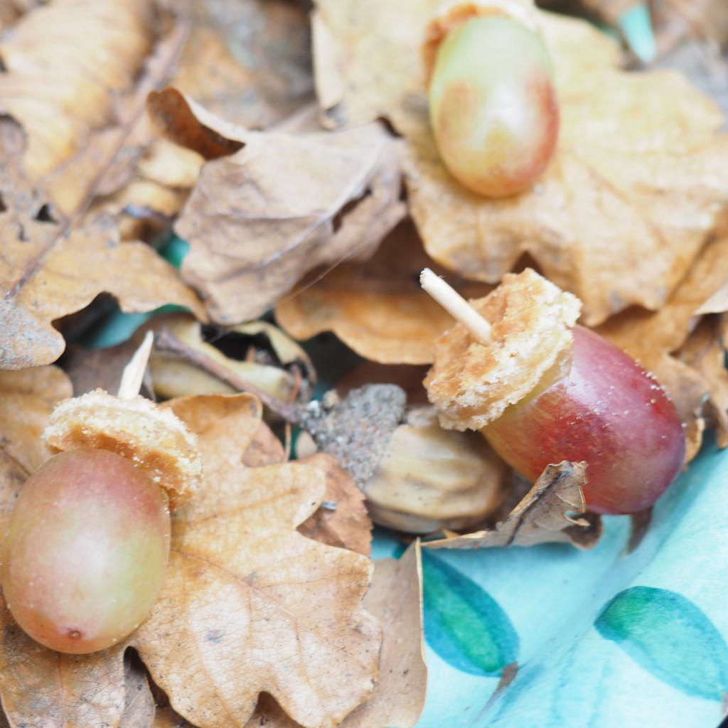 Traktatie herfst